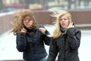 В Калининграде энергетики готовятся к ухудшению погоды